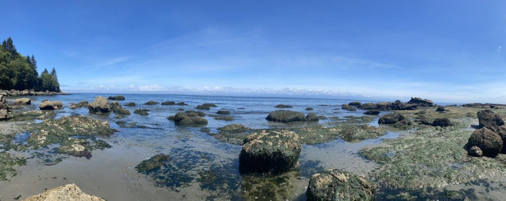 Northwestern coast of the Olympic Peninsula, Washington
